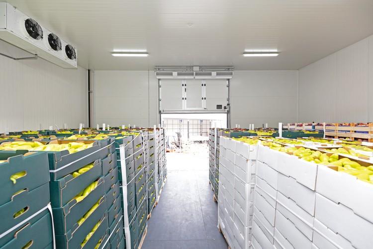 Stockage des denrées alimentaires dans une chambre froide